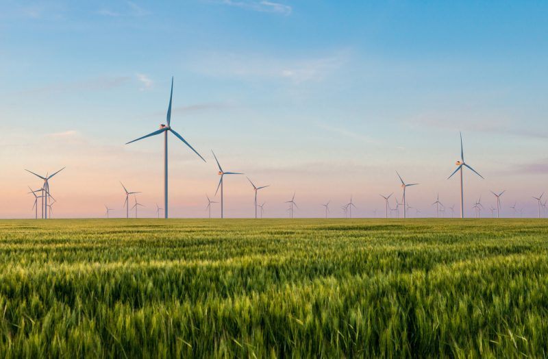 Master's of Energy & Environmental Management Image of Natural Resources Wind Farm